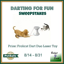 Darting For Fun Sweepstakes